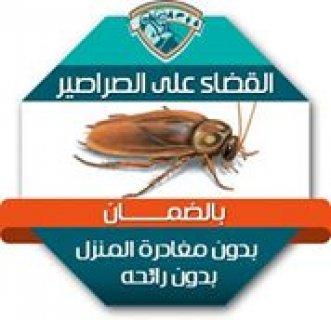 اقوى مبيد حشرى للقضاء على الصراصير والنمل وجميع الحشرات