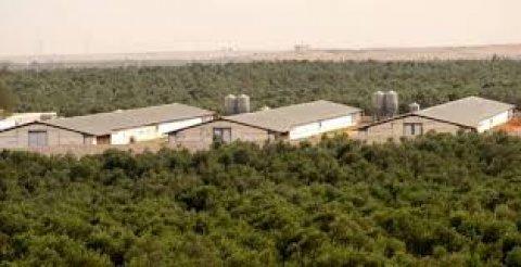 مزرعة 200 فدان على طريق مصر اسكندرية الصحراوى