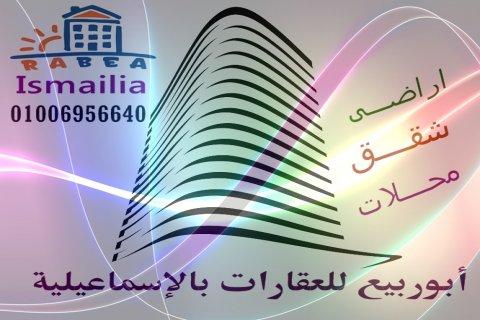 شقه للايجار فى الاسماعيليه ابوربيع للعقارات 01006956640