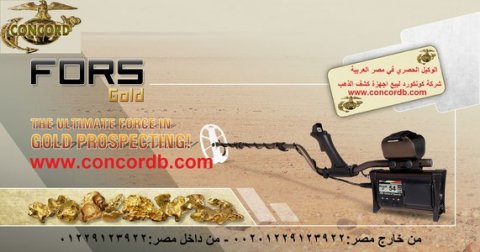بيع اجهزة كشف الذهب في مصر www.cocnocrdb.com 00201229123922