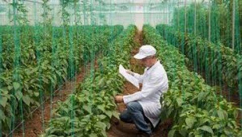 الوظيفة المطلوبة : مهندسين زراعين  المميزات :  براتب 1000 : 1600