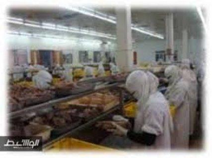 مطـلوب بنات عاملات بمصنع بالعين شمس براتب يصل الى 1000 ج – 8س اع