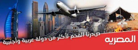 المصرية لتصنيع وتصدير الفحم النباتى
