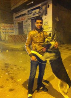 كلب بلاك جااك جاااااامد للبيع