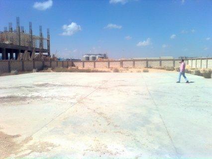 مصنع تحت الانشاء بـ600جنية 3000متر  برج العرب الجديدة