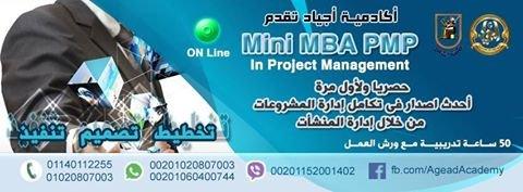 ادارة المشروعات mini mba pmp