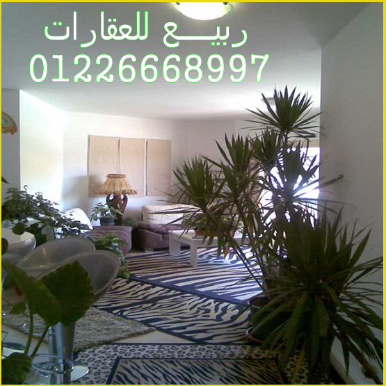 شقق مفروشة و شاليهات و فنادق بالإسماعيلية للإيجار مكتب ربيع 2015