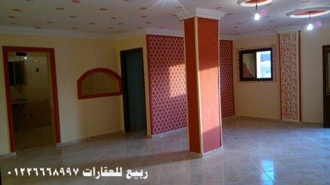 شقق للايجار بالاسماعيلية مكتب عقارات الاسماعيلية ربيع للعقارات