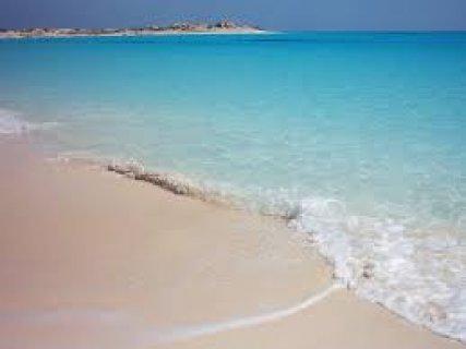 ادفع مقدم وصيف في شقتك بالساحل الشمالي