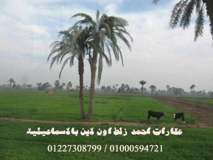ارض زراعية خمس فدادين محاصيل بـ 50 الف جنيه وبس