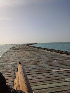 شاليهك علي احلي بحر في راس سدر واستلام فوري