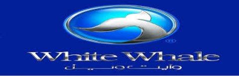 توكيل وايت ويل  01000630651 صيانة وايت ويل