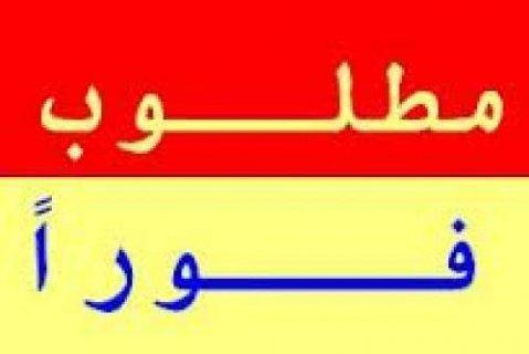 مطلوب فورا للتعاقد الجدى بمدينة نصر