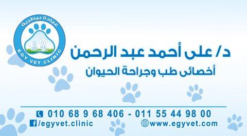طبيب بيطرى بالقاهرة