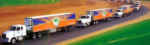 شركة دواجن وطنية قسم التوزيع يطلب سائقين للتعين فورا