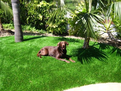 M.A SpoRt for industrial and grass landscaping $