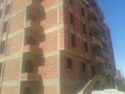 شقة بموقع مميز بجنوب الاحياء142.5م للبيع