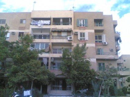 شقة  84م       بعمارات الجهاز بالحى الثامن بأكتوبر