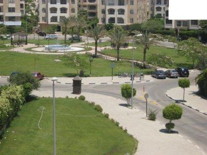 شقة 147م بيفرلى هيلز الشيخ زايد