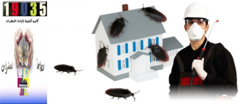 اباده الحشرات بدون رائحه 01200044572 / 19035