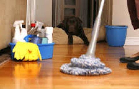 شركة نظافة وتنظيف بالمعادى 01227294604