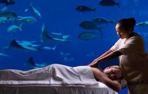 """خدمات فندقية وغرف مكيفة فى اكبر سبا فى مدينة نصر01279076580\""""\""""\""""\""""\"""""""