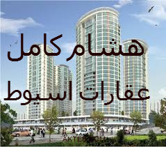 شقة للايجار ش تامينات السيارات