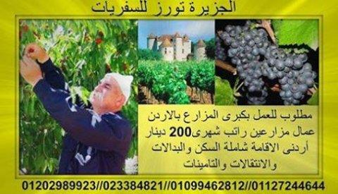 الاردن تطلب عمال براتب 200 دينار اردنى ويزيد كل سنه من 50 ل 100