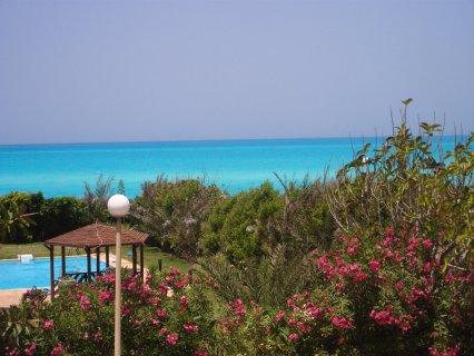 ايجار فيلا بمارينا ببسين تري البحر فاخرة مكيفه 01116658193
