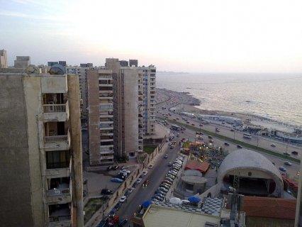 فرصة عظيمة للإستثمار في مصر