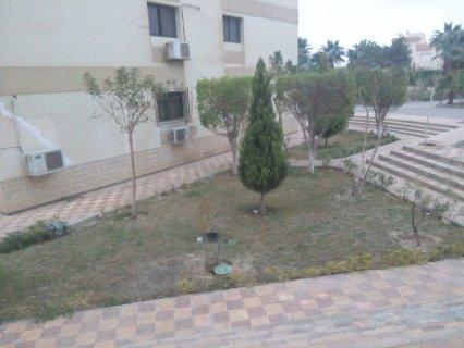 للاجار بمدينة الشروق شقة داخل كمبوند
