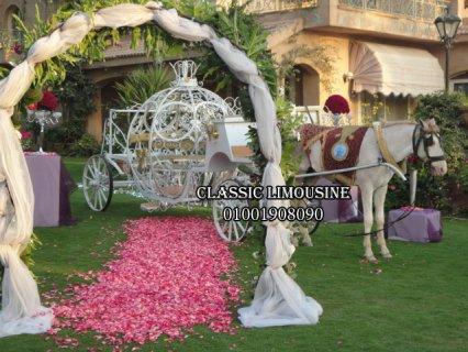 سندريلا بالحصان فى كلاسيك ليموزين لزفاف العروسين