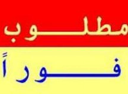 مطلوب للعمل فورا  مندوب توصيل اوردرات  داخل وخارج القاهرة