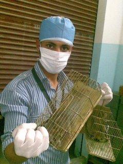 ابادة حشرات وقوارض احدث الماكينات واقوى المبيدات 01227294604