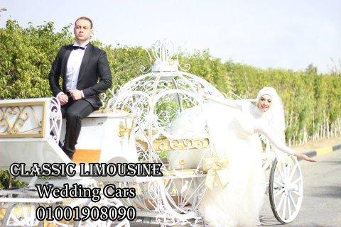 كارتة سندريلا لزفاف عروسين 2015