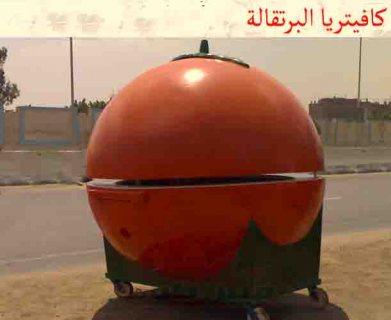 *^*^ كفتريا برتقالية فيبرجلاس.. . .