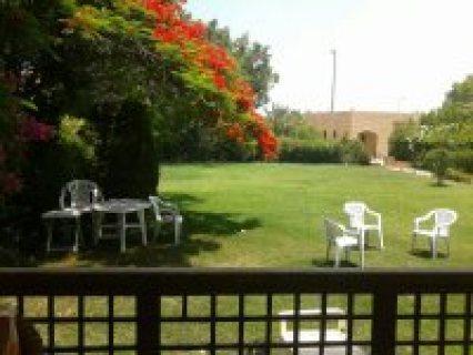 للايجار شاليه مارينا 5مكيف 4 غرف ارضي بحديقه 01115434342