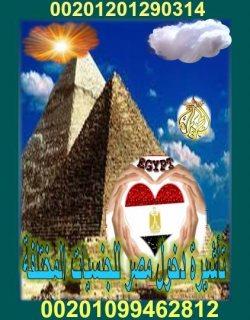 تأشيرات دخول مصر للجنسيات المختلفة هتستلم تأشيرتك فى أسبوعين فقط