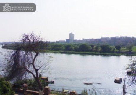 كورنيش النيل بنها قليوبية