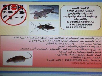 شركة فاكت كلين لابادة الحشرات وسوس الخشب بالضمان 01001573499