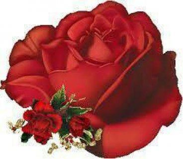 للصداقة بمدام 01119094038 واتس اب