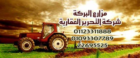 فقط إدفع  4000 جنيه مصري وإستثمر فلوسك فى مزرعة 5 فدان