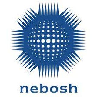 دورة النيبوش الدولية للسلامة والصحة المهنية