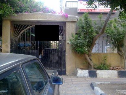 شقه مستويين ارضي مدخل خاص في مدينة نصر