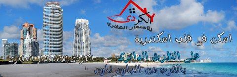 فرصة للجادين فطعة ارض 250 متر للبيع بالاسكندرية