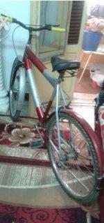 دراجة كبيرة للبيع