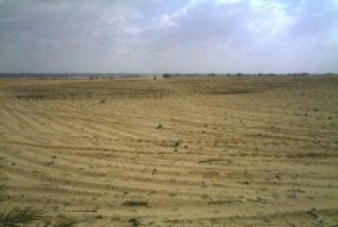 لأصحاب التميز أرض للبيع زراعية ومبانى