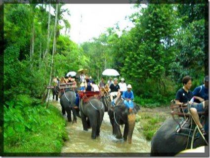 #رحلات_تايلاند    #بانكوك