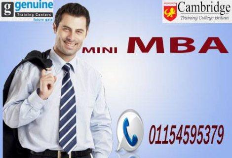 ماجستير إدارة الأعمال المصغر MINI MBA