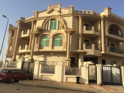 شقه للبيع في الشيخ زايد  نص تشطيب بالشيخ زايد